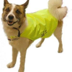 Turvaliivit koiralle